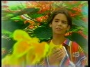 Download video lindas musicas e imagens romanticas mp4 3gp terbaru,download video lindas musicas e imagens